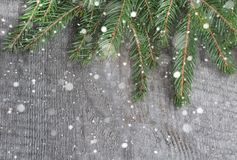 Spruce twig on table, christmas background. Top view with copy space stock images