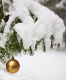 Spruce twigs decorated with a  ball. Picture of spruce twigs decorated with a  ball Royalty Free Stock Image