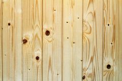 Spruce wainscot  texture Royalty Free Stock Photo