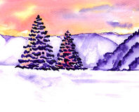 Spruce watercolor Royalty Free Stock Images