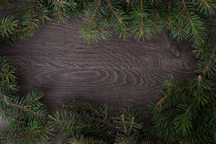 Spruce wood on the background. Holiday, abstract, soft Royalty Free Stock Photos