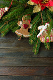 Spruce and xmas decor Stock Images