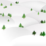 Spruces on the hills Royalty Free Stock Image