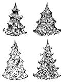 Spruces isolated on white background Royalty Free Stock Photo