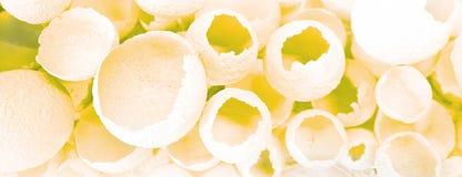 Sprucken äggmodell som färgrik bakgrund Den bästa sikten som är plan lägger, den selektiva fokusen royaltyfri foto