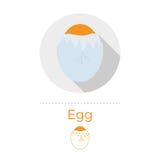Sprucken äggvektorillustration Royaltyfri Illustrationer