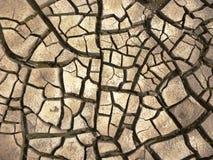 sprucken bakgrund torkar jord Royaltyfria Bilder