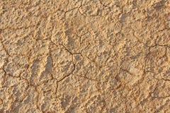 sprucken bakgrund torkar jord sprucken mudmodell Jord i spricka Arkivfoton