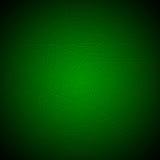 sprucken grön yttersida Royaltyfri Bild