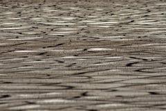 sprucken jord Fotografering för Bildbyråer