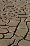 sprucken jord Arkivbilder