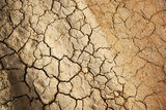 Sprucken jord Arkivfoto