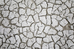 sprucken jord Abstrakt textur för bakgrund Arkivbilder