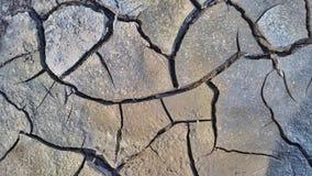 Sprucken jord för torra grå färger Royaltyfri Bild