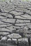 Sprucken jord vid erosion Arkivfoto