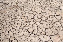 Sprucken jordning, Crecked textur Royaltyfri Fotografi
