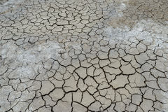 sprucken jordning för lera Arkivbilder