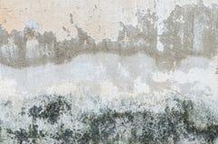 Sprucken konkret tappningvägg Royaltyfria Foton