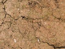 Sprucken makrotextur - jord - som är torr och arkivfoto
