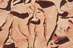 sprucken mud Arkivbild