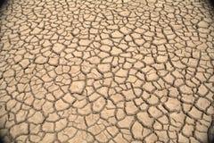 sprucken mud Royaltyfri Foto