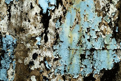 Sprucken och skalningsmålarfärg och gammal vägg med textur Royaltyfria Bilder