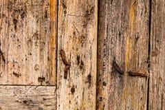 Sprucken panel för Anciient träbakgrund arkivbilder