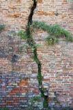 Sprucken tegelstenvägg - djup spricka i en tegelstenvägg royaltyfri fotografi