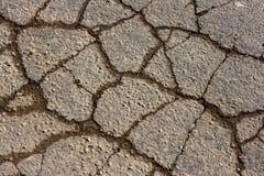 sprucken textur för asfalt Royaltyfri Foto