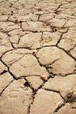 sprucken torkad jord Arkivfoton