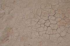 sprucken torkad jord Royaltyfri Fotografi