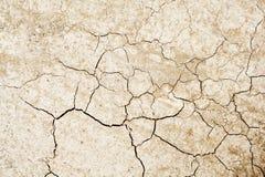sprucken torkad jord royaltyfri foto