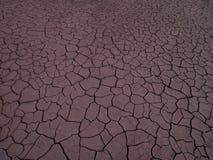 sprucken torr jordning Royaltyfria Bilder