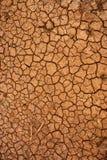 sprucken torr jordningsyttersida Arkivbilder