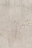 sprucken vägg för cement Royaltyfria Bilder