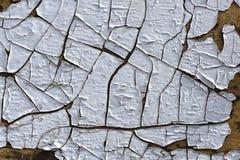 Sprucken vit målarfärgbakgrund Fotografering för Bildbyråer