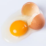sprucket ägg Arkivbild