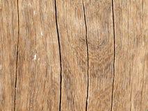 Sprucket åldrigt trä Royaltyfri Foto