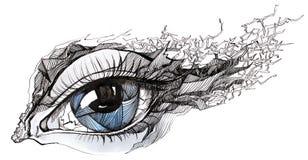 sprucket öga Fotografering för Bildbyråer