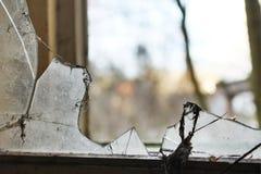 sprucket fönster Royaltyfria Bilder