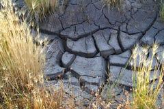 Sprucket torka ökengyttja i Colorado arkivfoto