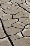sprucket torka jord Royaltyfri Bild