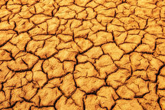 sprucket torka jord royaltyfria foton