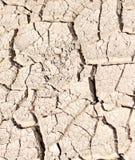 Sprucket torka jord som en bakgrund Arkivbilder