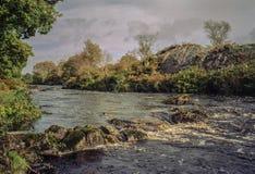 Sprudelnder Bach umgeben durch grüne Bäume und Büsche Lizenzfreie Stockfotografie