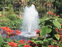 Sprudelnder Brunnen Lizenzfreies Stockbild