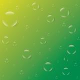 Sprudelt Tautropfen auf einem gelbgrünen Hintergrundvektor Lizenzfreies Stockbild