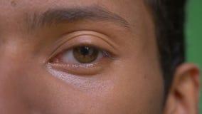 Spruit van het close-up de halve gezicht van jong aantrekkelijk Indisch mannetje die met ogen recht camera bekijken stock videobeelden