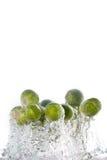 Spruitjes die uit het water springen stock fotografie