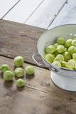 Spruitjes in een zeef op een lijst Royalty-vrije Stock Afbeelding